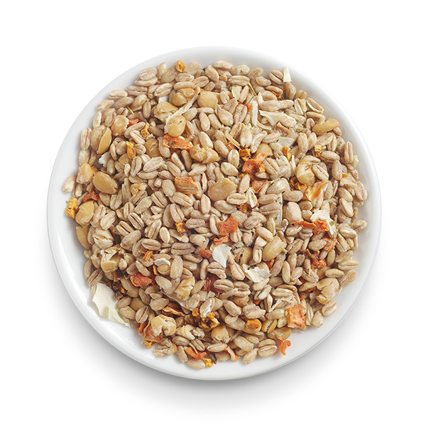Organic Farro with Pumpkin